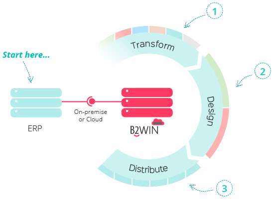 B2Win Infographic, Transform, Design, then Destribute