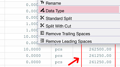 Set Data Type - Excel Designer feature
